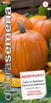 Dobrá semená tekvica obrovská - Racer Plus F1 PMT, halloween 7s
