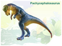 Dinosaurus - Pachycephalosaurus 22 cm