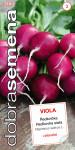 Dobrá semená Reďkovka fialová - Viola celoročné 4g