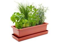 Vypěstuj si bylinkový mix, truhlík terracota 40 cm, Domestico