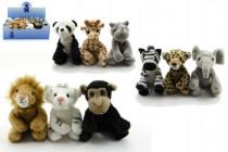 Zvieratká safari ZOO plyš 12cm - mix variantov či farieb