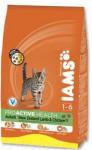 Iams Cat r/i Lamb 15 kg