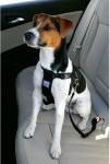 Postroj pes Bezpečnostné do auta M Zolux