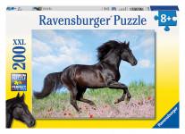 Čierny žrebec 200d
