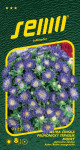 Semo Astrovka čínska - Průhonický trpaslík modrý 0,5g