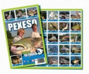 Pexeso 32 S Jakubem na rybách společenská hra