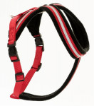 Postroj nylon Comfy červeno / čierny The Company 5 Medium