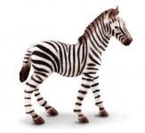 Zebra žriebä